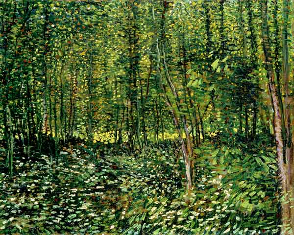 woods and undergrowth, van gogh