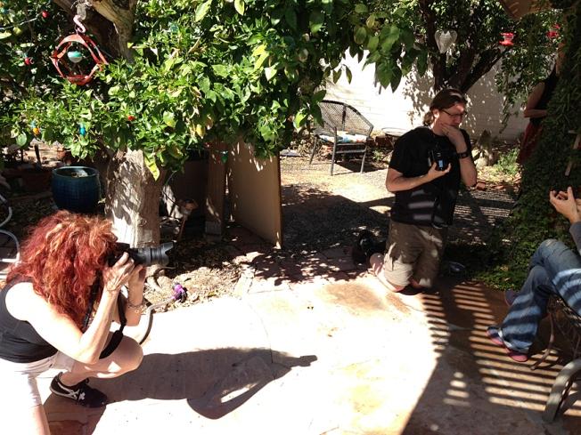 Bright Tucson Sun