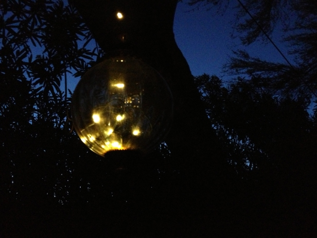 Firefly lights and desert summer night sky