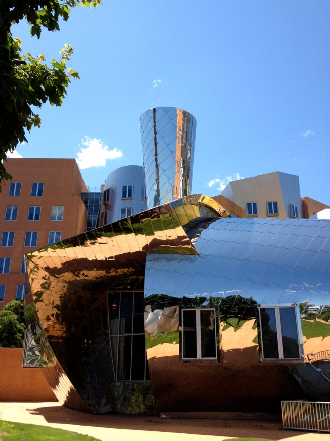 Gehry Saturday