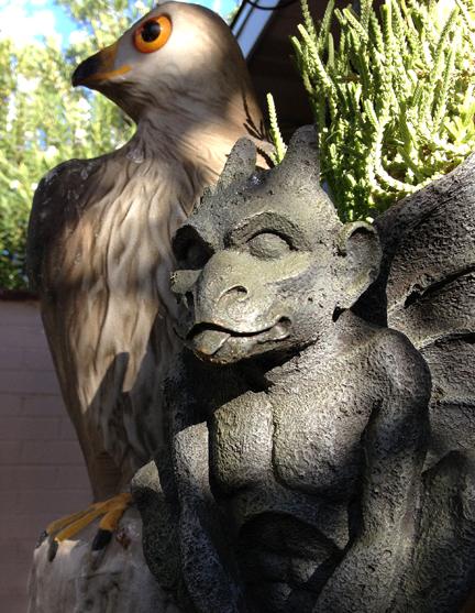Falcon and Gargoyle