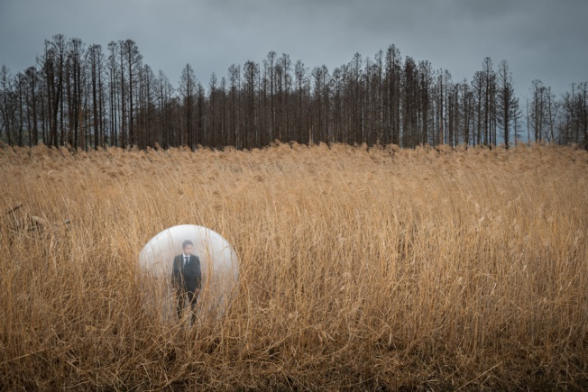 """The man in the bubble before the dead forest"""