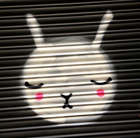 Barcelona Bunny 2