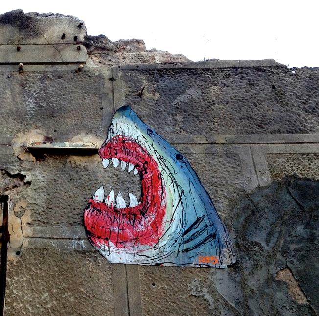 Barcelona Shark