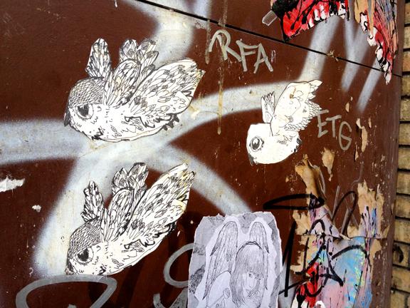 birds Barcelona