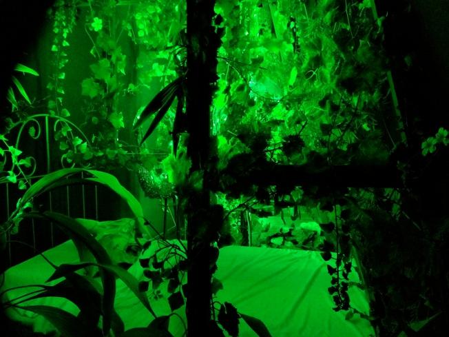 Dali Green Bedroom