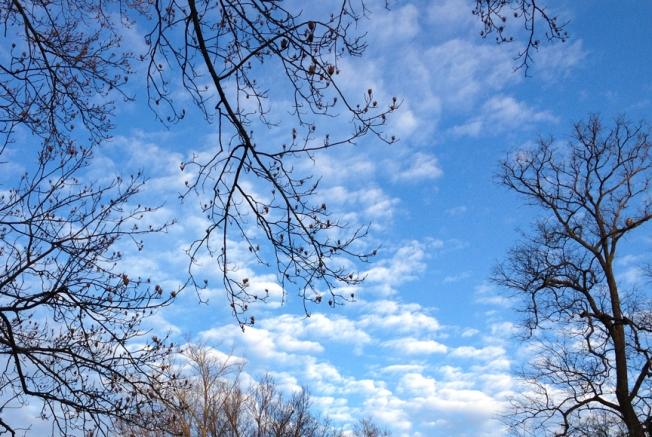 pretty sky day 2