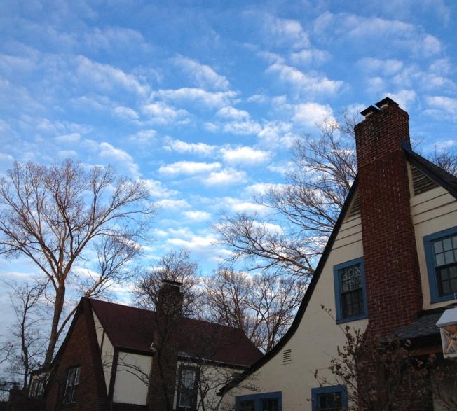 Pretty Sky Day