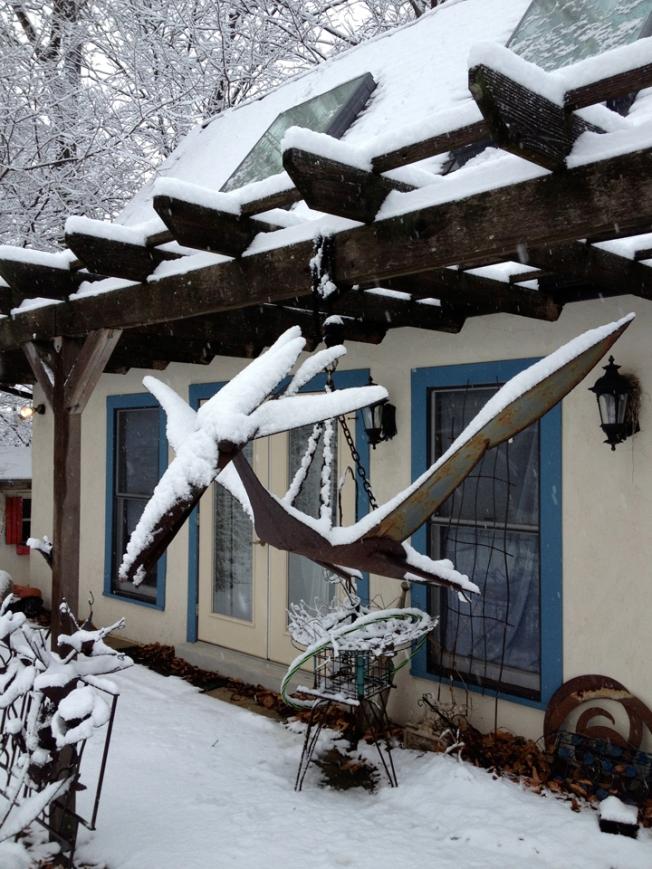 Pteranodon and Hula Hoop