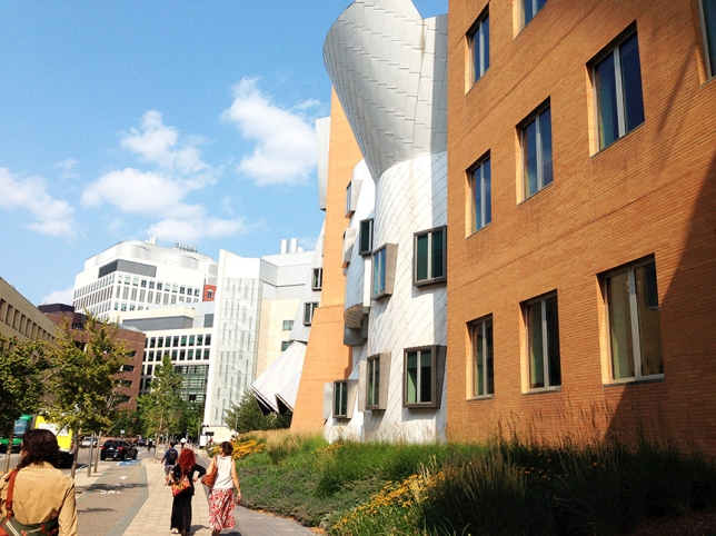 Ryans shot at Gehry Jul 2014