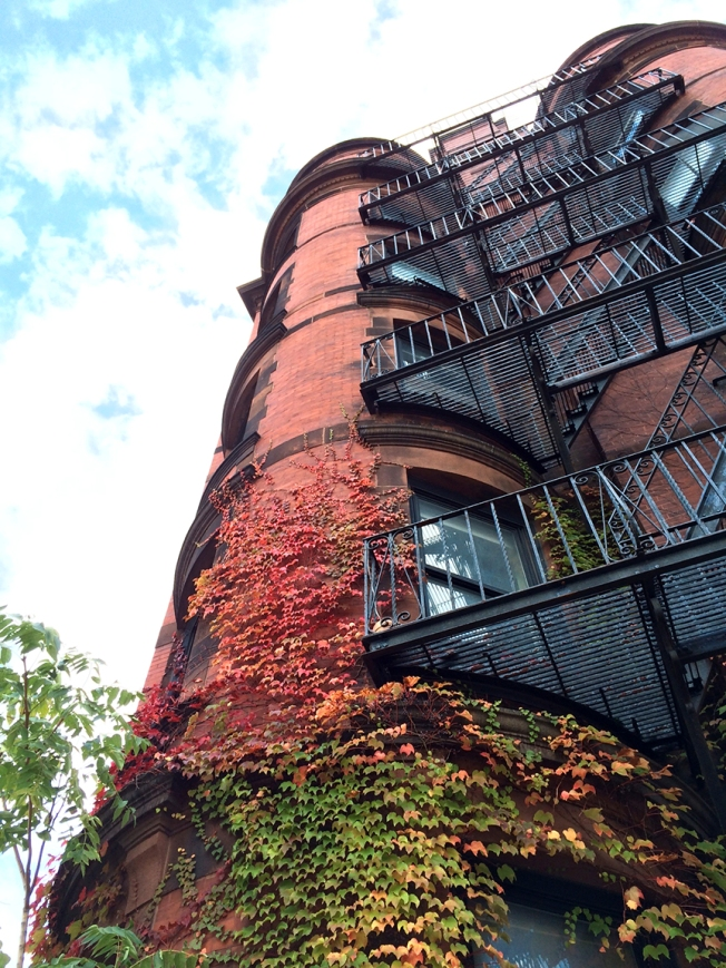 Fall vines on a turret