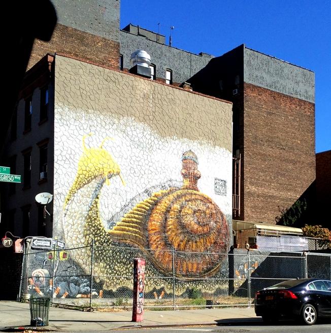 snail in brooklyn
