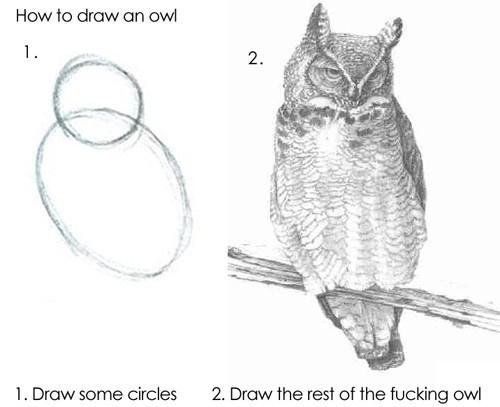 draw the fucking owl