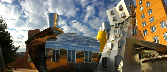 Gehry O Rama MIT, photo by Kate McKinnon